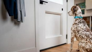 CES 2021: Chamberlain's MyQ Pet Portal smart dog door